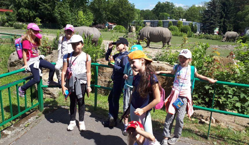 PÓŁKOLONIE W MIKOŁOWIE 2018 - zoo